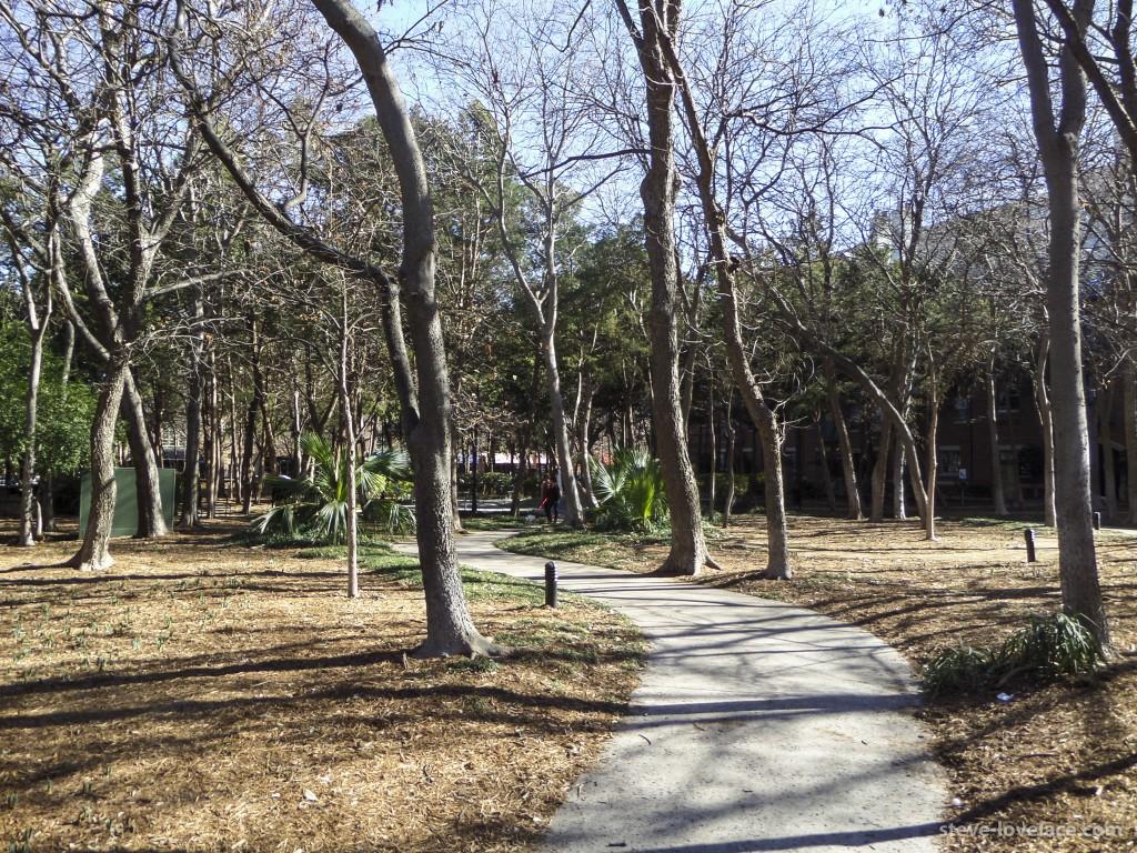 Addison Circle Park 1