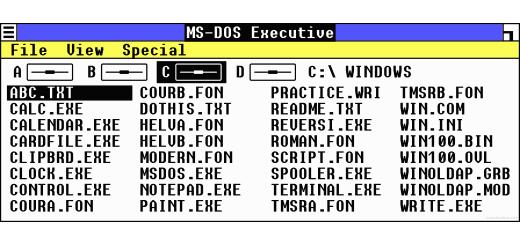 Microsoft Windows MS-DOS Executive