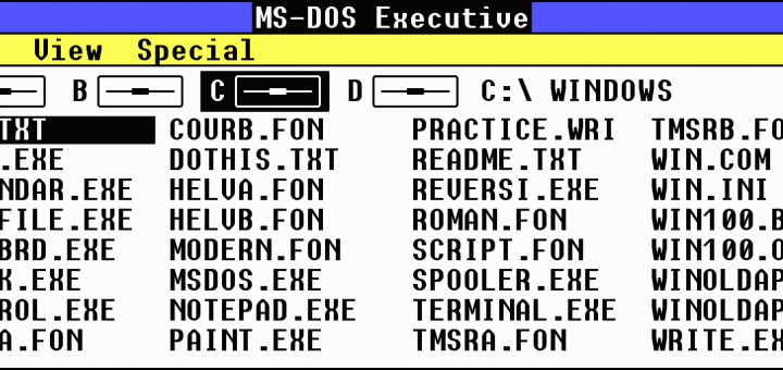 Microsoft Windows MS-DOS Executive