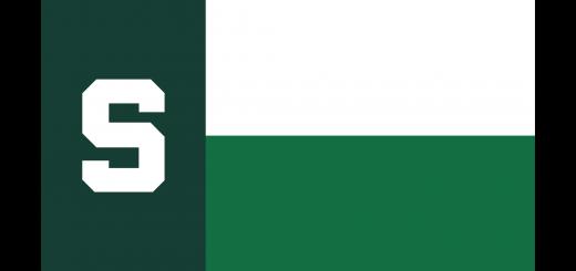 MSU Spartan Texas Flag